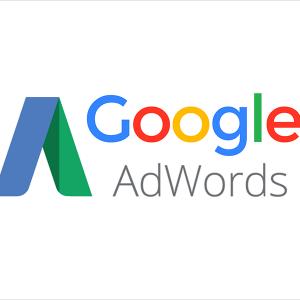 Google Ads setup fee